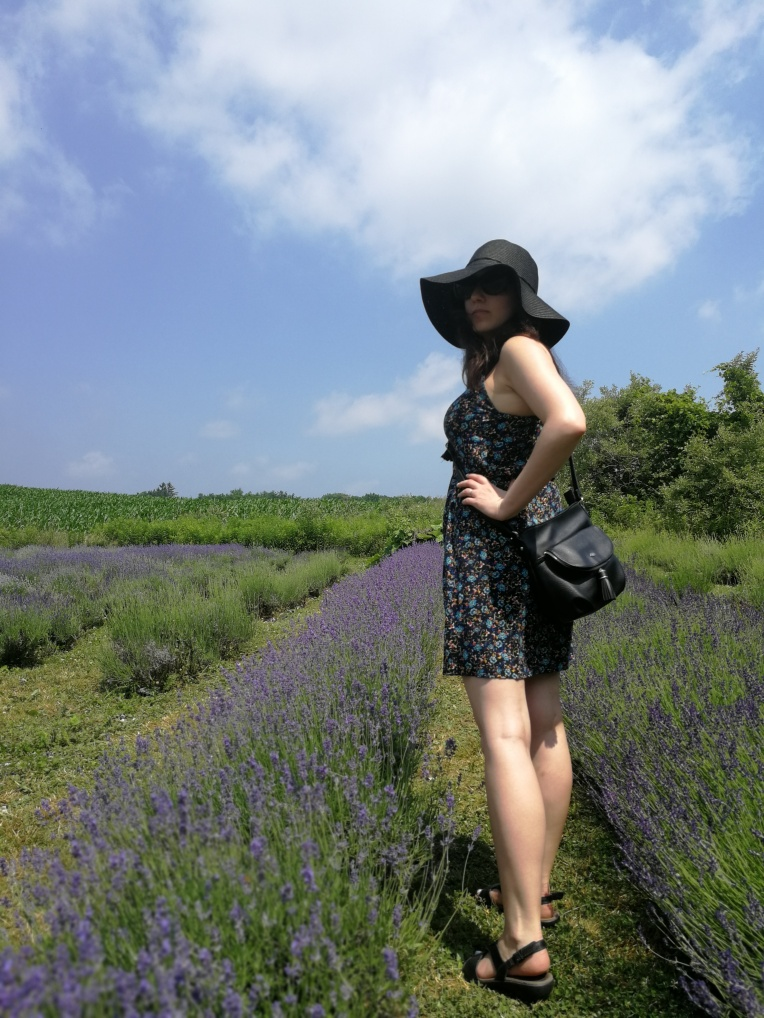 Visiting Weir's Lane Lavender & Apiary during a heat wave